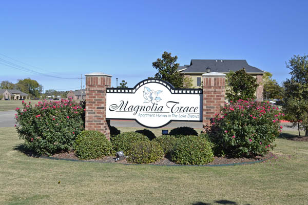 Vintage Magnolia Chase 543