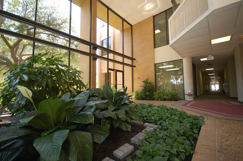Pierremont Office Park I II and III (1)